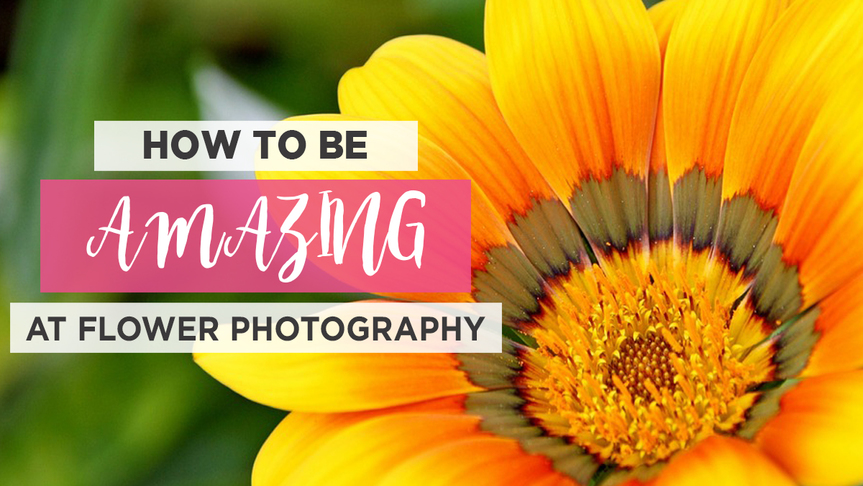 How to Be Amazing at Flower Photography