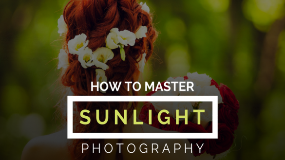 How to Master Sunlight Photography