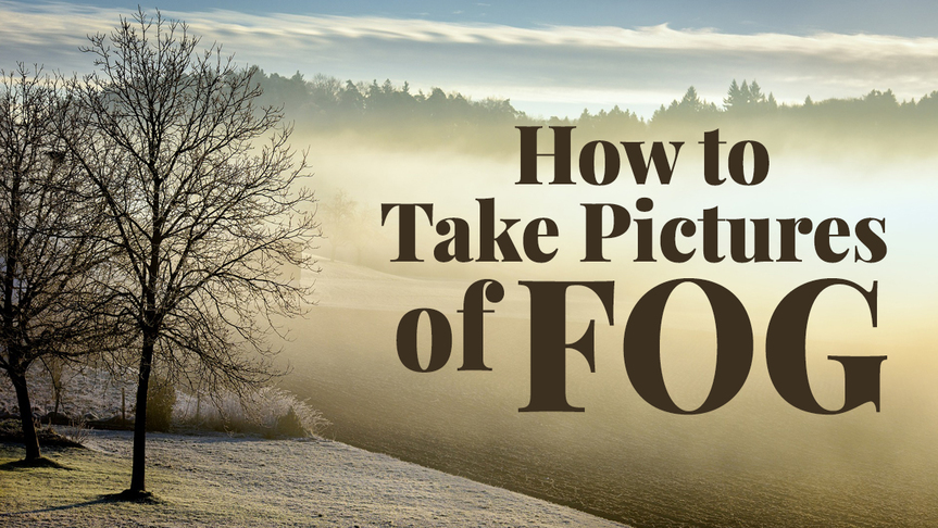 How to Take Pictures of Fog