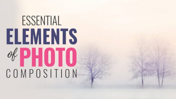 essential_elements_of_photo_composition