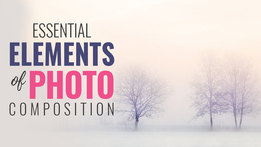 Essential Elements of Photo Composition